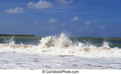 Ocean wave breaking the shore