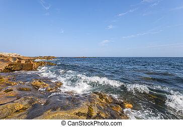 Ocean waves crashing against a rocky shore (Duncan's Cove, ...
