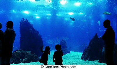oceanarium, ludzie