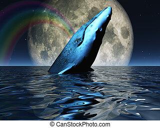 oceani, pieno, balena, superficie, luna