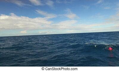 Ocean's horizon shot - A wide shot of the ocean's horizon...