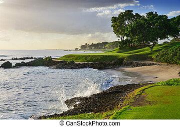 Oceanside Afternoon Golf