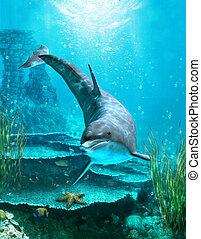 Oceanworld 3 - a proud dolphin swims in the ocean