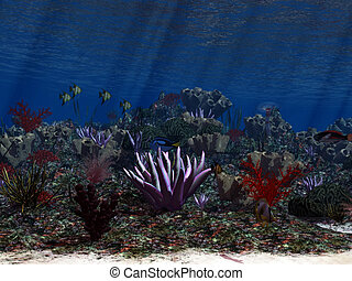 Oceanworld 3 - the colorful life of the ocean