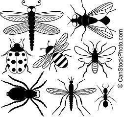 ocho, insecto, siluetas
