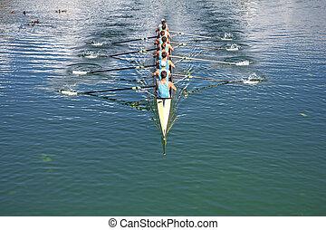 ocho, rowers, entrenamiento, remo