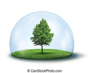ochronny, drzewo, samotny, kopuła, zielony, pod