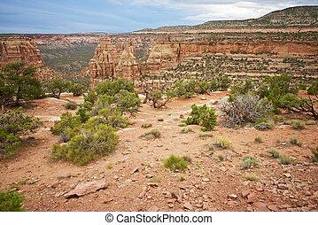 ocidental, paisagem, colorado