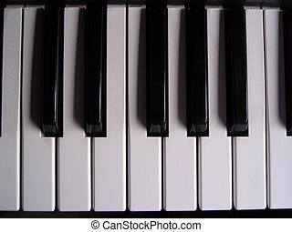 Octave - Top view of an octave of an electronic organ...