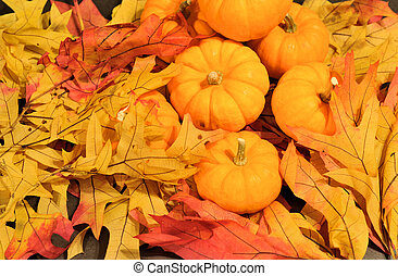 closeup of colored leaves with pumpkins