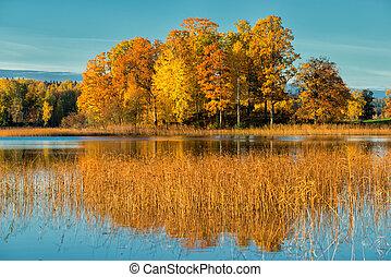 October morning in Sweden