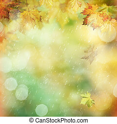 October rain in the forest, abstract environmental backgrounds