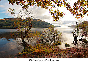 octobre, ecosse, loch, royaume-uni, lomond