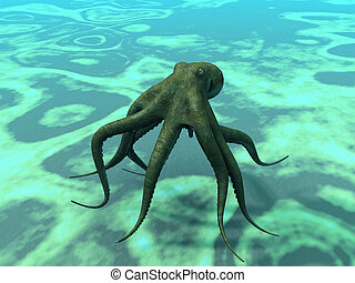 octopus at the bottom of the sea