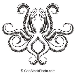 Octopus engraving illustration - Octopus drawn in engraving...