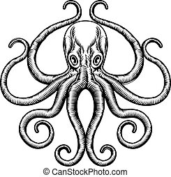 Octopus or Squid Illustration
