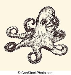 Octopus Vintage Illustration, Hand Drawn, Sketch
