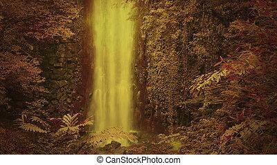 oczarowany, las, z, wodospad