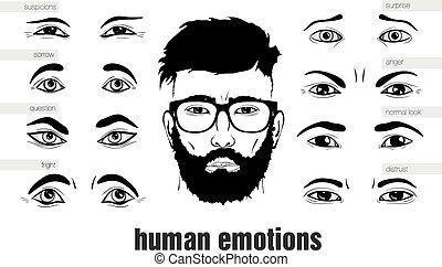 oczy, opis, ludzki, wzruszenia