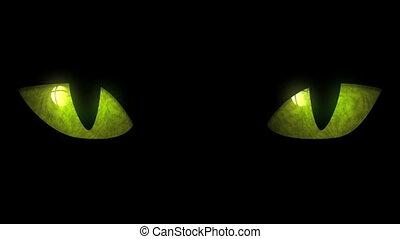 oczy, zatracony, pętla, kot