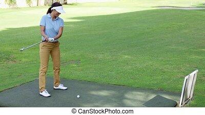 od, trójnik, młody, przygotowując, samiczy bardziej golfowy