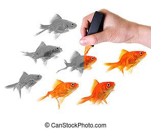 odaad, élet, fordíts, egy, csoport, közül, aranyhal