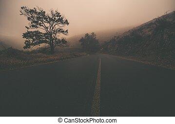 Odd Foggy Road