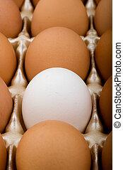 Oddball Egg