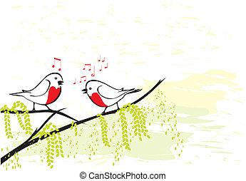 oder, rotkehlchen, zweig, baum, vögel