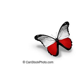 odizolowany, bandera, tło, polski, biały, motyl