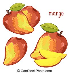 odizolowany, mangowiec, vector.