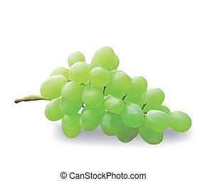 odizolowany, wektor, white., winogrona, świeży, grono