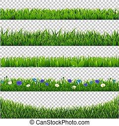 odizolowany, zbiór, zielone tło, trawa, brzeg, przeźroczysty