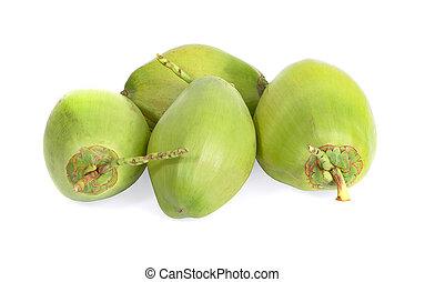 odizolowany, zielone tło, biały, orzech kokosowy