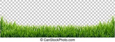 odizolowany, zielone tło, trawa, brzeg, przeźroczysty