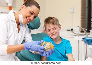 odontólogo, mostrando, pequeno, paciente, dentes, modelo