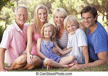 odprężając, rodzina, park, dziadkowie, dzieci, rodzice