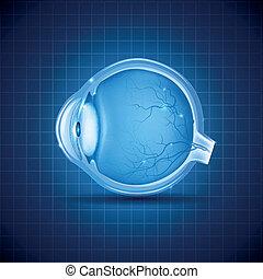 oeil bleu, conception abstraite, humain
