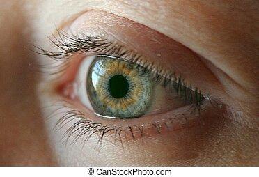 oeil vert, joli