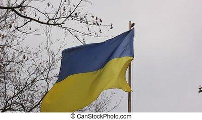 oekraïense vlag, in de wind