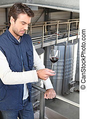 Oenologist with a glass wine