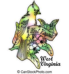 oeste, estado, virgínia, pássaro