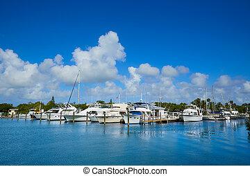 oeste, florida, ensenada, llave, puerto deportivo, ...