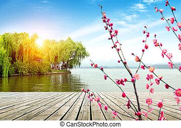oeste, hangzhou, lago, paisagem