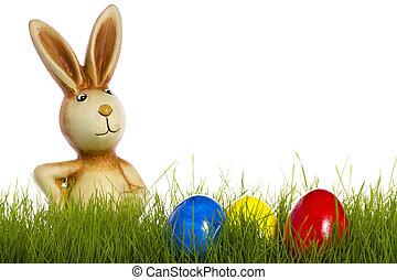 oeufs, derrière, fond, blanc, herbe, Paques, lapin