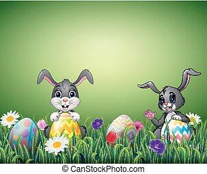 oeufs, deux, champ, dessins animés, lapin, paques, heureux