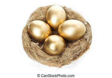 oeufs, doré, nid, fond blanc
