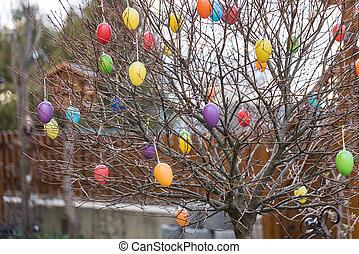 oeufs pâques, arbre, coloré