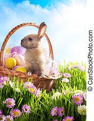 oeufs, panier, décoré, herbe, lapin pâques