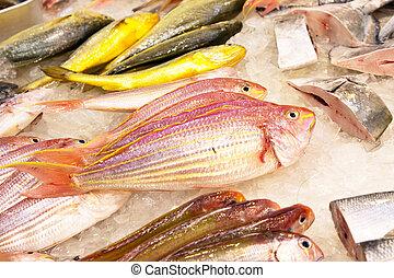 oferowany, azja, ryby, świeży, cała ryba, targ